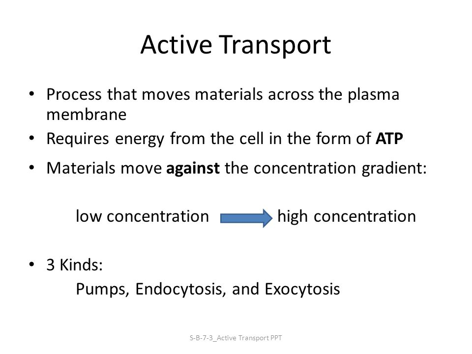 Active Transport Process that moves materials across the plasma membrane Requires energy from the cell in the form of ATP Materials move against the concentration gradient: low concentration high concentration 3 Kinds: Pumps, Endocytosis, and Exocytosis S-B-7-3_Active Transport PPT