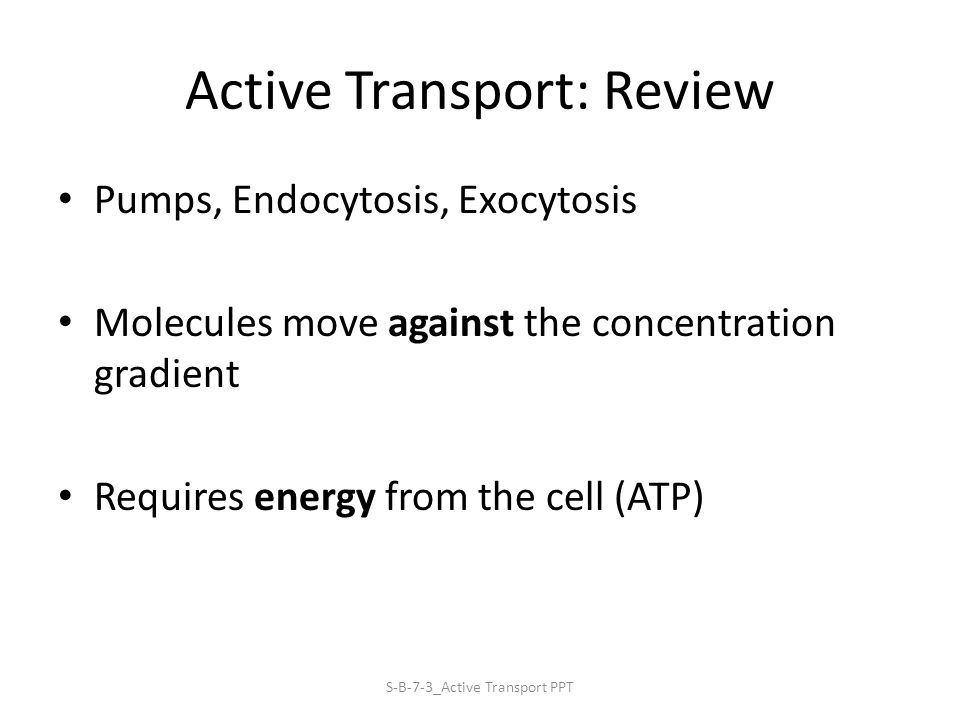 Active Transport: Review Pumps, Endocytosis, Exocytosis Molecules move against the concentration gradient Requires energy from the cell (ATP) S-B-7-3_Active Transport PPT