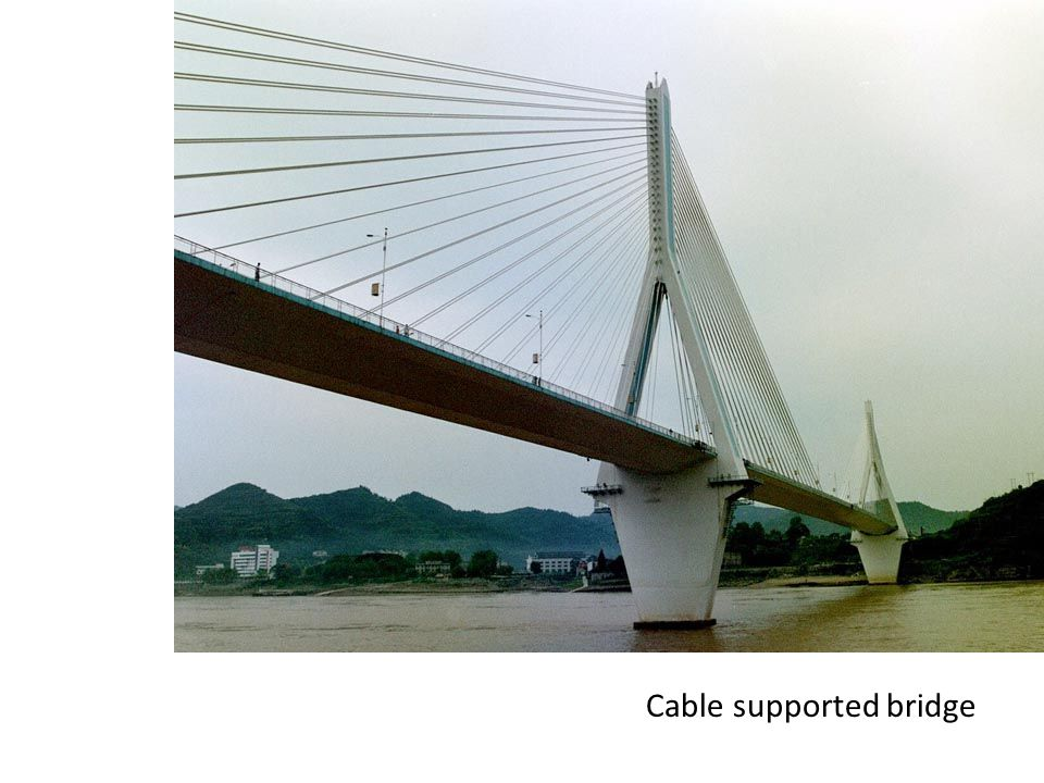 Cable supported bridge