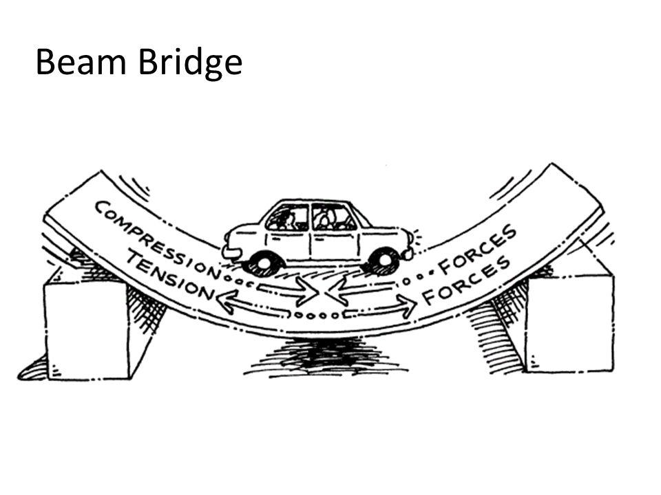 Ted Talk Suspension Bridge