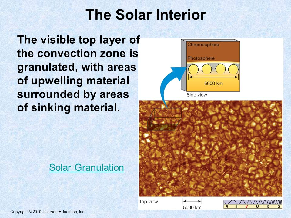 Copyright © 2010 Pearson Education, Inc. The Solar Interior The visible top layer of the convection zone is granulated, with areas of upwelling materi