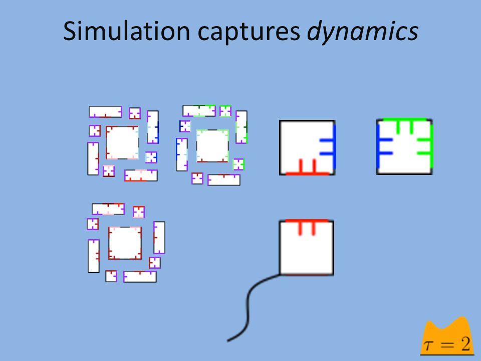 Simulation captures dynamics