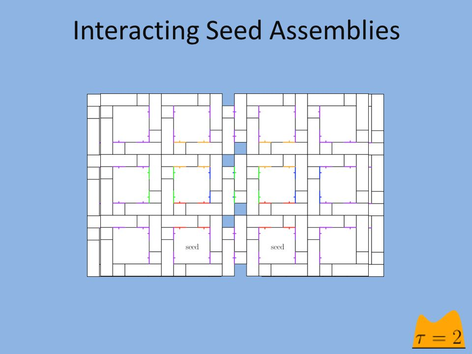 Interacting Seed Assemblies