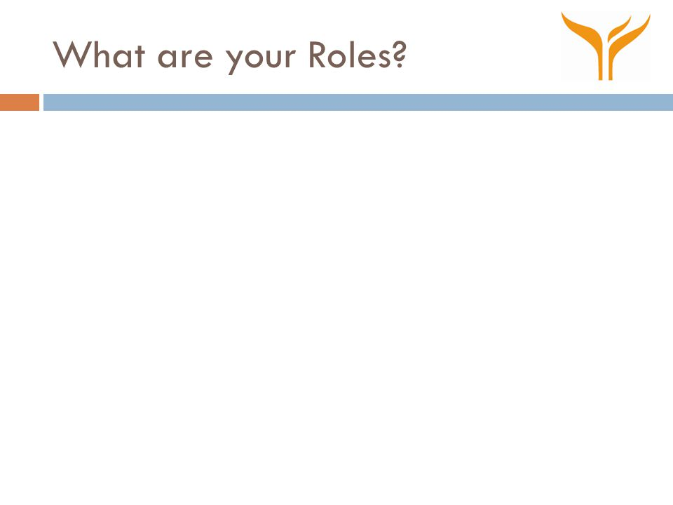What are your Roles?
