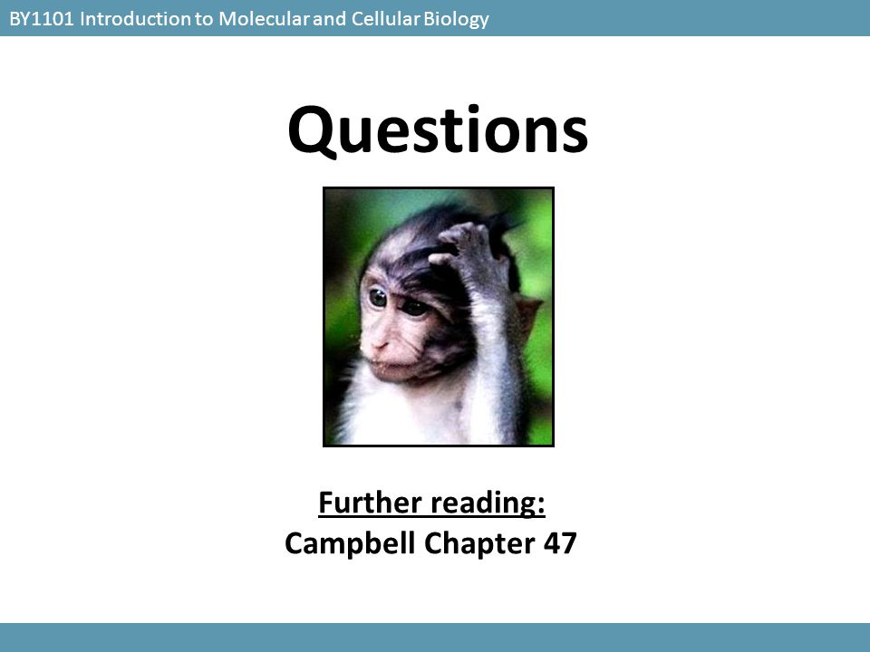 BY1101 Introduction to Molecular and Cellular Biology Questions Further reading: Campbell Chapter 47