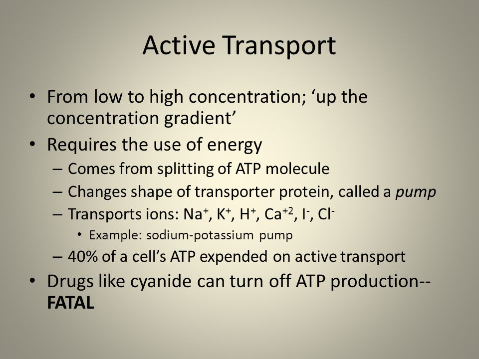 Passive or Active? Have I been talking about passive, active, or passive and active transport?