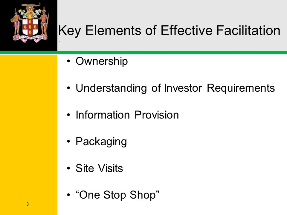 Key Elements of Effective Facilitation 3 Ownership Understanding of Investor Requirements Information Provision Packaging Site Visits One Stop Shop