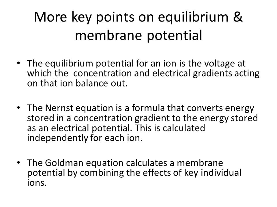 More key points on equilibrium & membrane potential The equilibrium potential for an ion is the voltage at which the concentration and electrical gradients acting on that ion balance out.