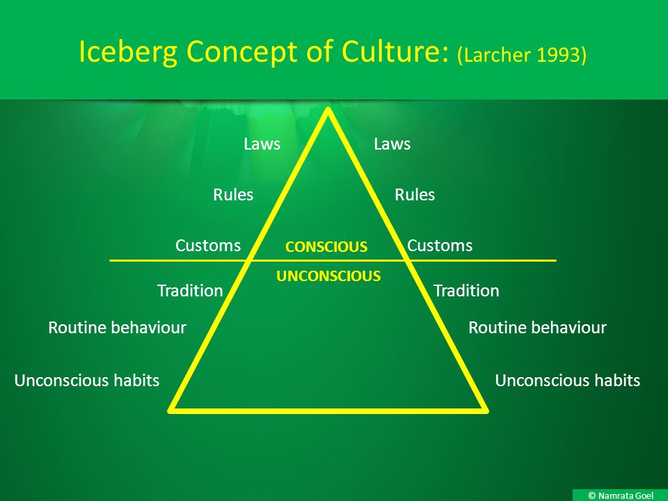 © Namrata Goel Iceberg Concept of Culture: (Larcher 1993) Laws Rules Customs Laws Rules Customs Tradition Tradition Routine behaviour Unconscious habi