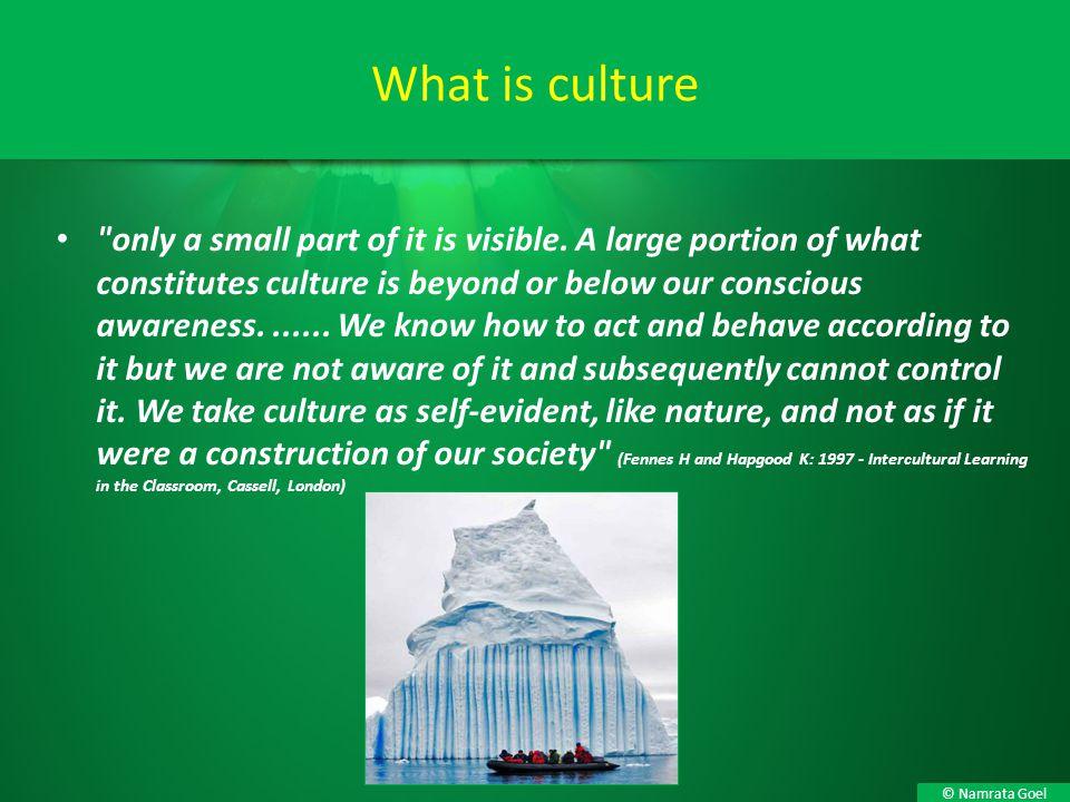 © Namrata Goel What is culture