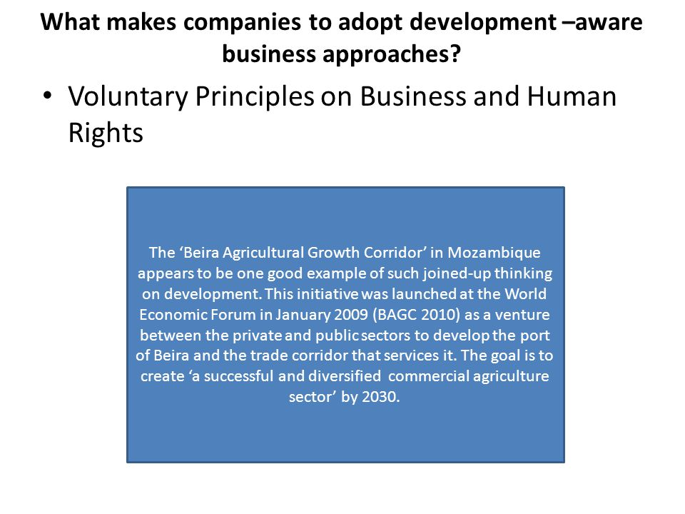 What makes companies to adopt development –aware business approaches.