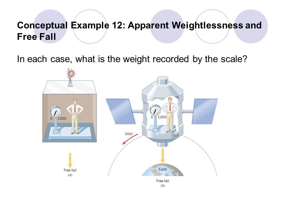 Conceptual Example 12: Apparent Weightlessness and Free Fall In each case, what is the weight recorded by the scale