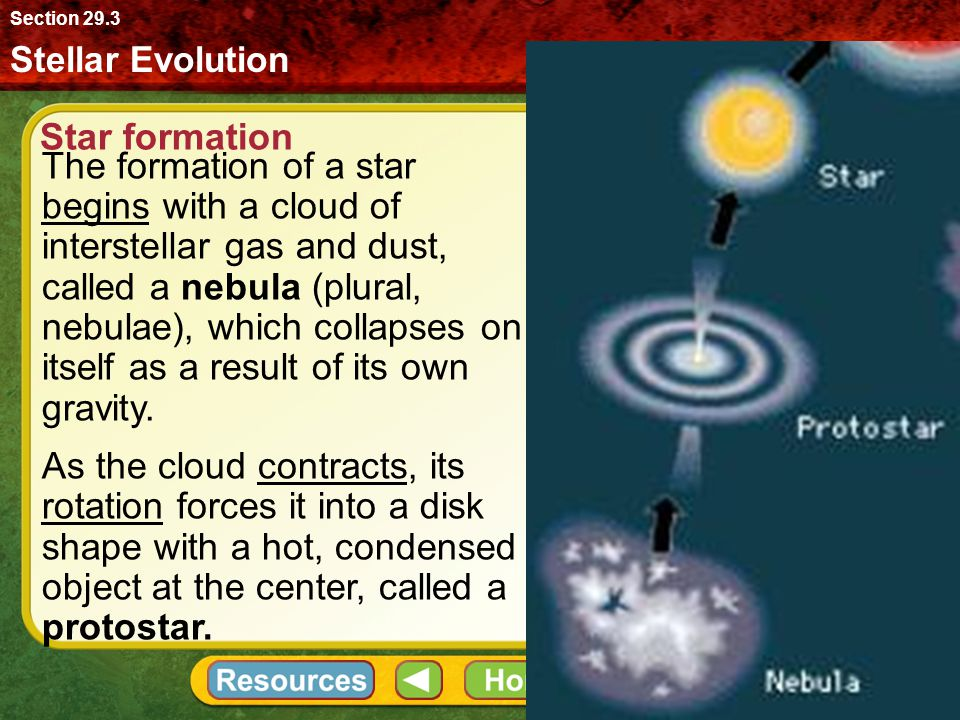 Stellar Evolution Section 29.3 The formation of a star begins with a cloud of interstellar gas and dust, called a nebula (plural, nebulae), which coll