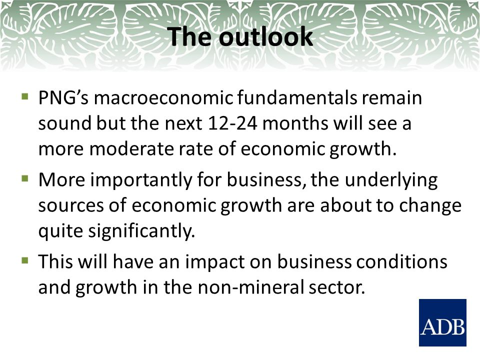 The outlook  PNG's macroeconomic fundamentals remain sound but the next 12-24 months will see a more moderate rate of economic growth.