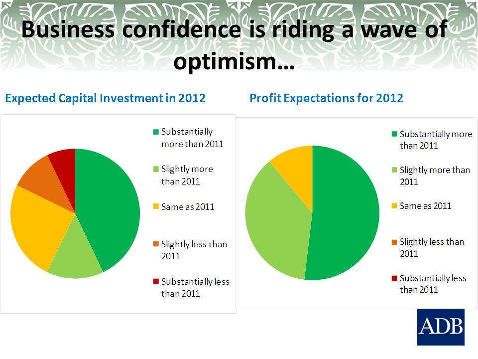 Business confidence is riding a wave of optimism… Expected Capital Investment in 2012Profit Expectations for 2012