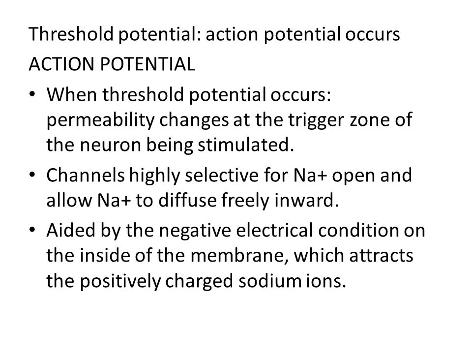 Threshold potential: action potential occurs ACTION POTENTIAL When threshold potential occurs: permeability changes at the trigger zone of the neuron