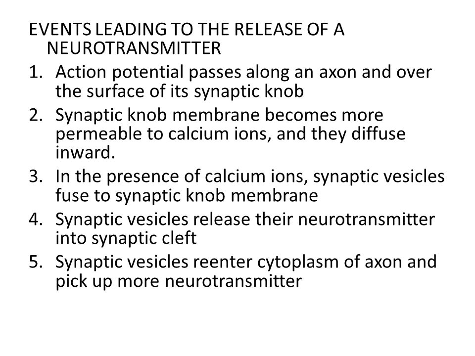 EVENTS LEADING TO THE RELEASE OF A NEUROTRANSMITTER 1.Action potential passes along an axon and over the surface of its synaptic knob 2.Synaptic knob