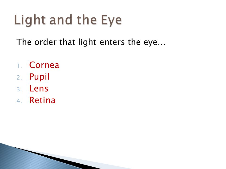 The order that light enters the eye… 1. Cornea 2. Pupil 3. Lens 4. Retina