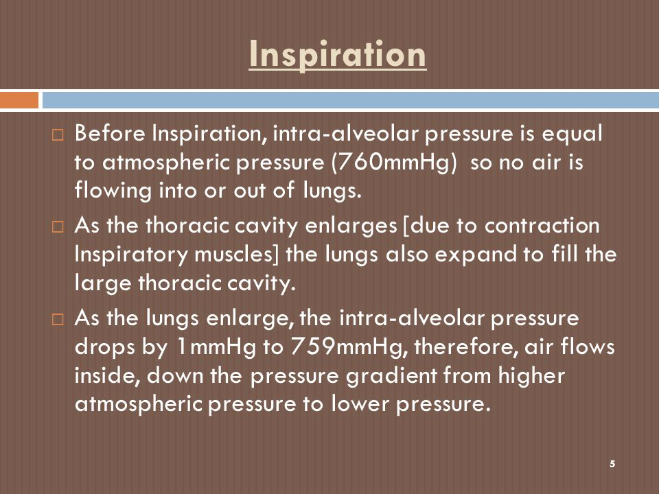 Inspiration 5  Before Inspiration, intra-alveolar pressure is equal to atmospheric pressure (760mmHg) so no air is flowing into or out of lungs.