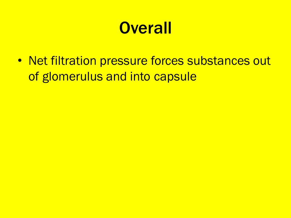 Overall Net filtration pressure forces substances out of glomerulus and into capsule