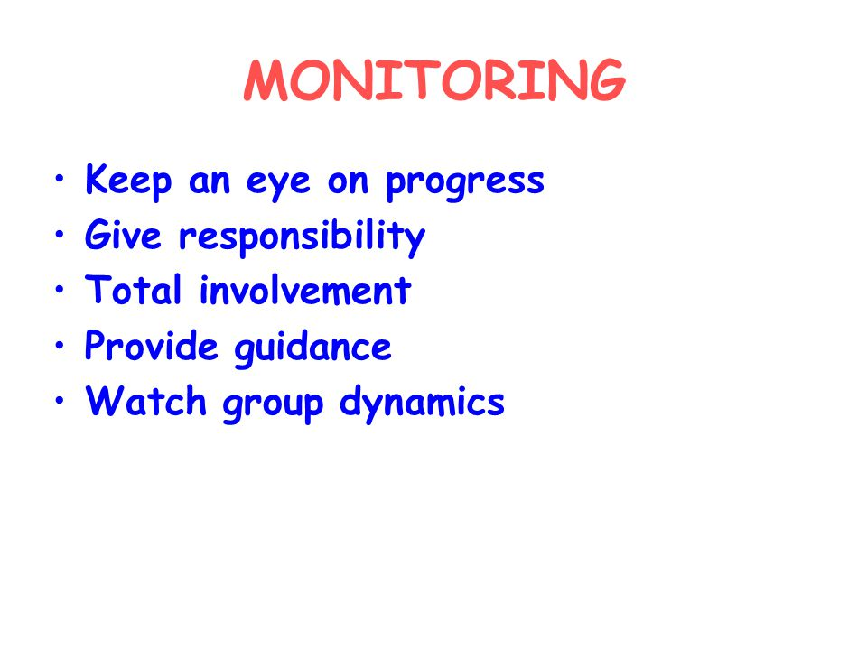 MONITORING Keep an eye on progress Give responsibility Total involvement Provide guidance Watch group dynamics