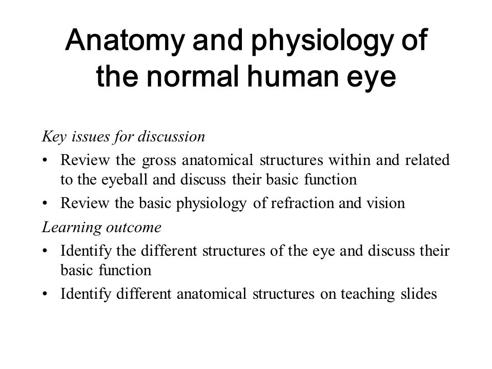 Anatomy and physiology of the normal human eye Key issues for discussion Review the gross anatomical structures within and related to the eyeball and