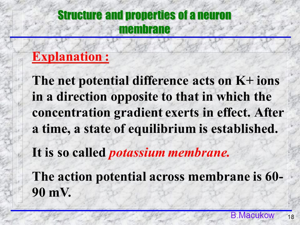 B.Macukow 18 Explanation : The net potential difference acts on K+ ions in a direction opposite to that in which the concentration gradient exerts in effect.