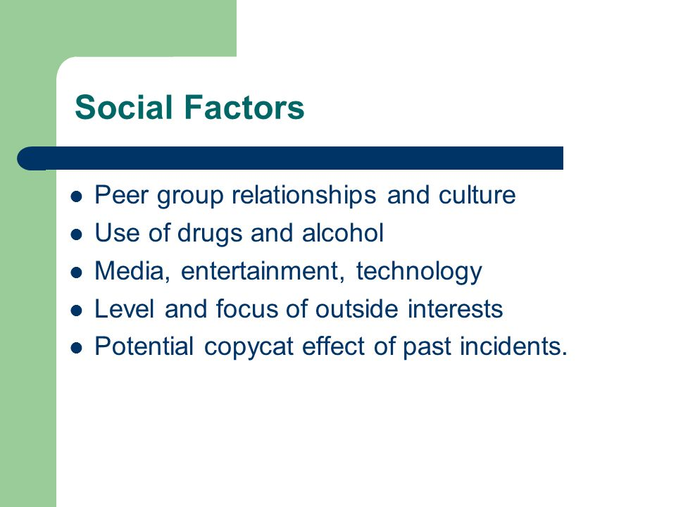 Social Factors Peer group relationships and culture Use of drugs and alcohol Media, entertainment, technology Level and focus of outside interests Potential copycat effect of past incidents.