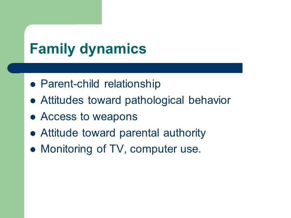 Family dynamics Parent-child relationship Attitudes toward pathological behavior Access to weapons Attitude toward parental authority Monitoring of TV