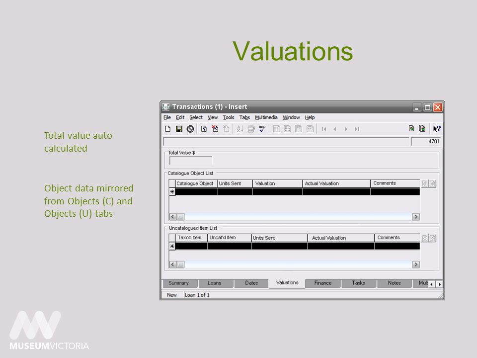 Valuations Object data mirrored from Objects (C) and Objects (U) tabs Total value auto calculated
