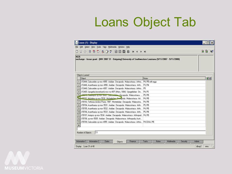 Loans Object Tab
