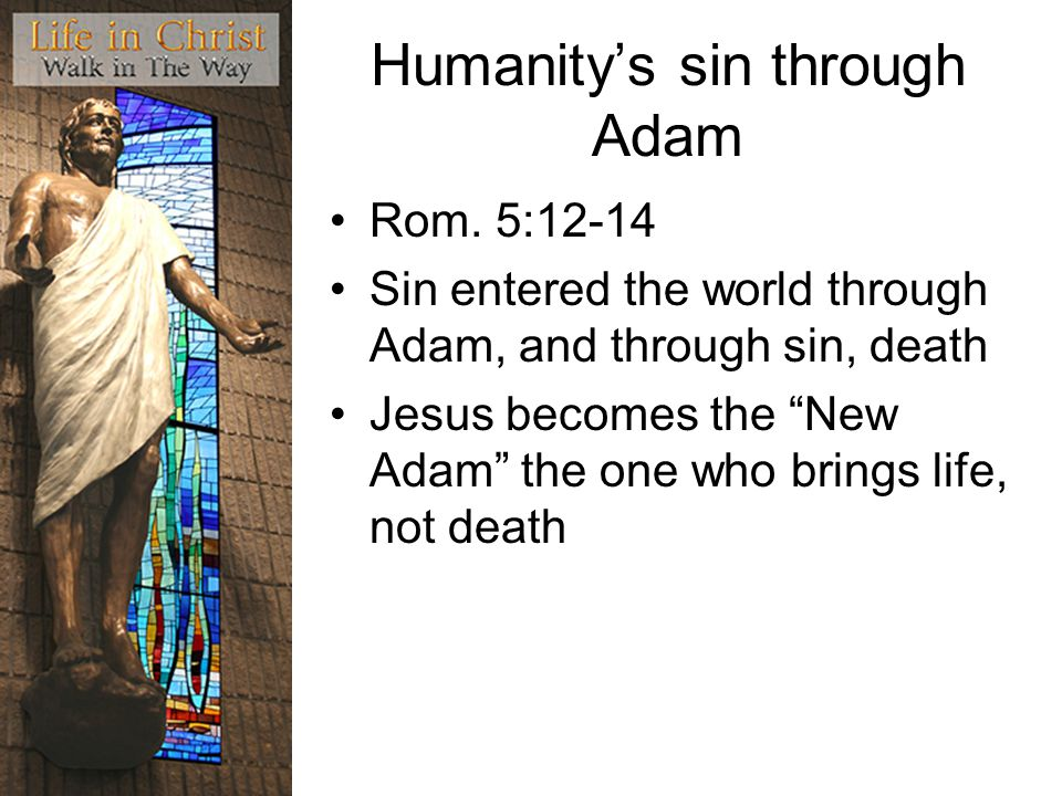 Humanity's sin through Adam Rom.