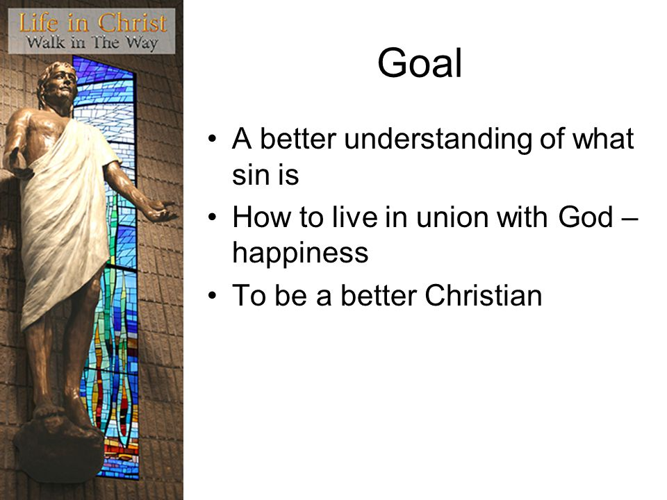 Goal A better understanding of what sin is How to live in union with God – happiness To be a better Christian