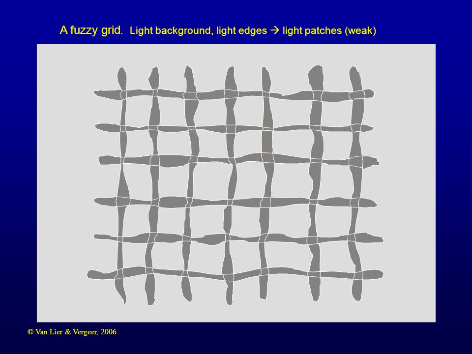 © Van Lier & Vergeer, 2006 A fuzzy grid. Light background, light edges  light patches (weak)