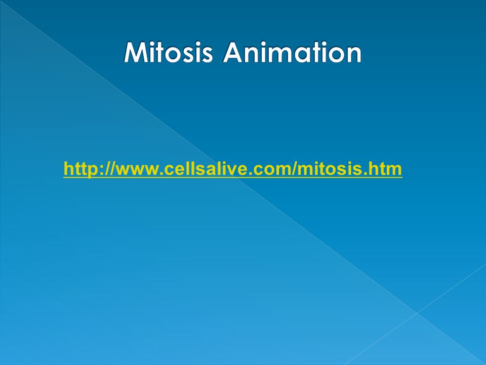 http://www.cellsalive.com/mitosis.htm