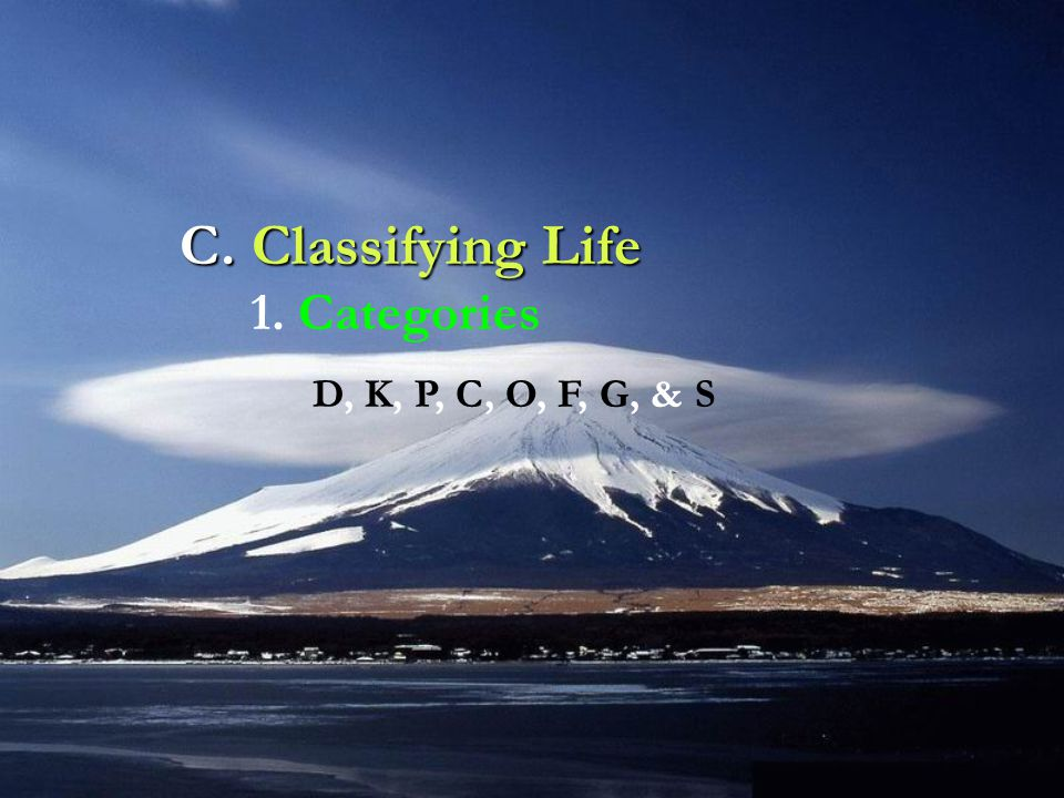 C. Classifying Life 1. Categories D, K, P, C, O, F, G, & S