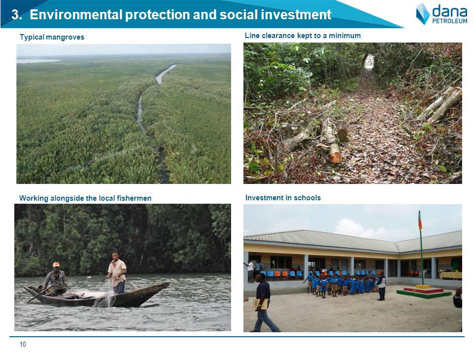 3. Environmental protection and social investment 10 Typical mangroves Working alongside the local fishermen Investment in schools Line clearance kept