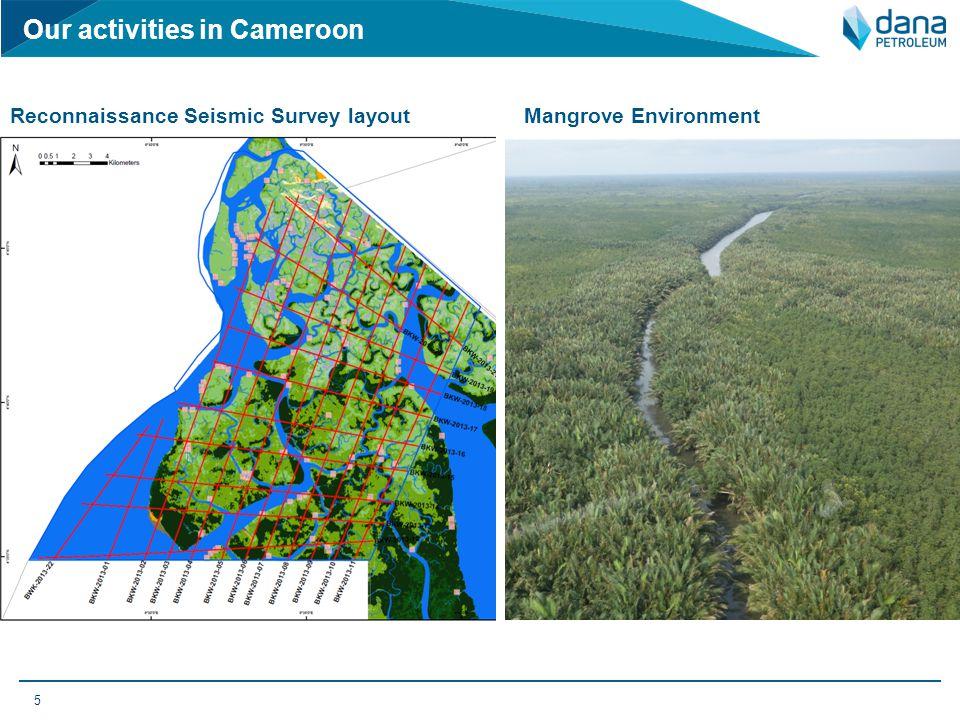 5 Reconnaissance Seismic Survey layoutMangrove Environment