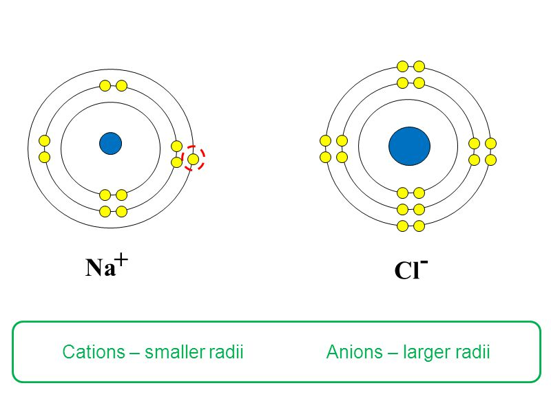 Cl Na +- Cations – smaller radii Anions – larger radii
