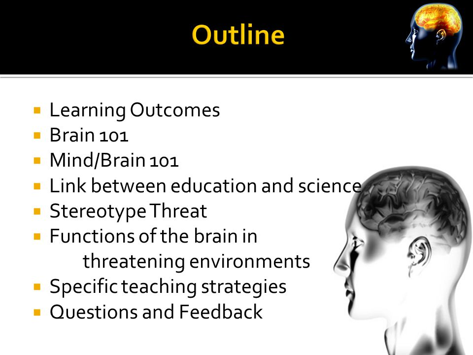  Learning Outcomes  Brain 101  Mind/Brain 101  Link between education and science  Stereotype Threat  Functions of the brain in threatening environments  Specific teaching strategies  Questions and Feedback
