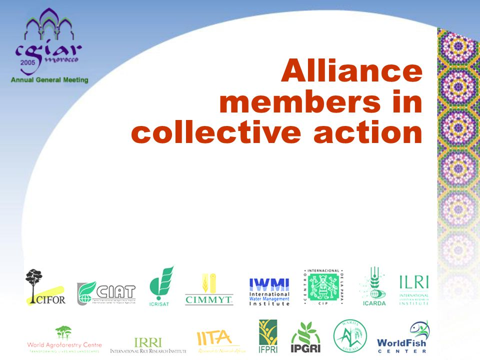Alliance members in collective action