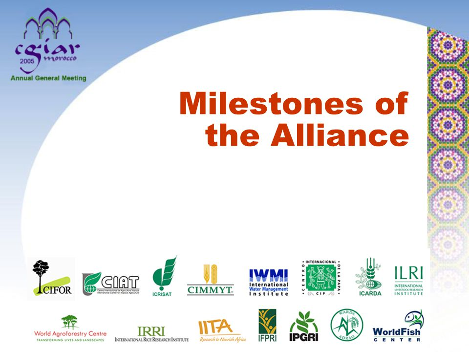 Selection for synchrony in flowering under controlled drought stress 45,000 tons of seed of stress-tolerant maize varieties for Africa Average yield gains of 15- 20% in Eastern and Southern Africa CIMMYT: Stress breeding for maize International Maize and Wheat Improvement Center (With CGIAR Centers and national partners)