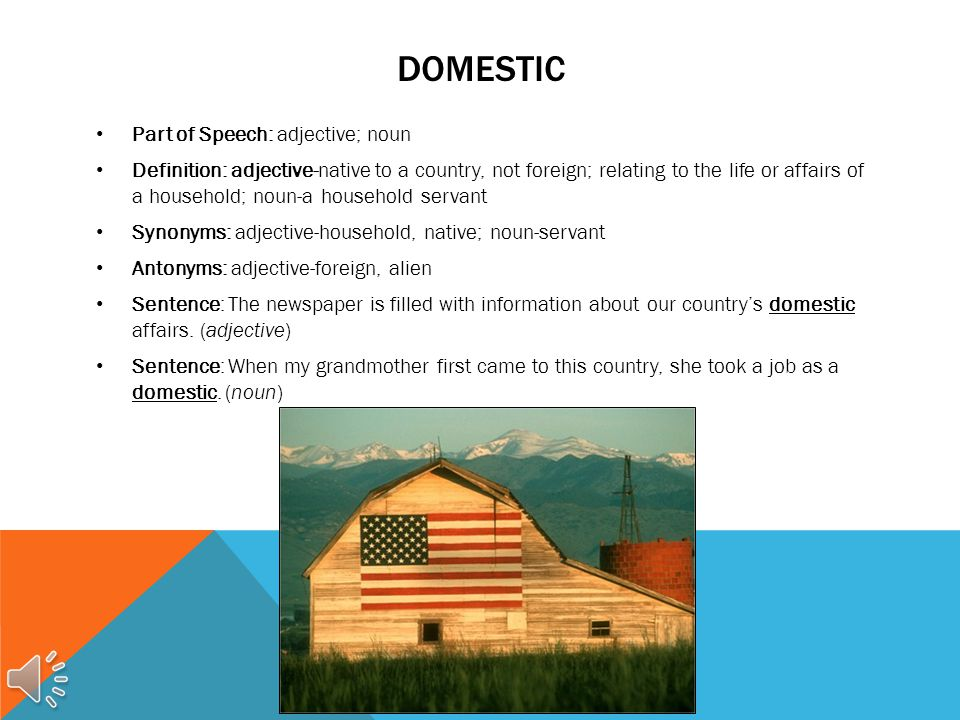 DOMESTIC Part of Speech: adjective; noun Definition: adjective-native to a country, not foreign; relating to the life or affairs of a household; noun-a household servant Synonyms: adjective-household, native; noun-servant Antonyms: adjective-foreign, alien Sentence: The newspaper is filled with information about our country's domestic affairs.