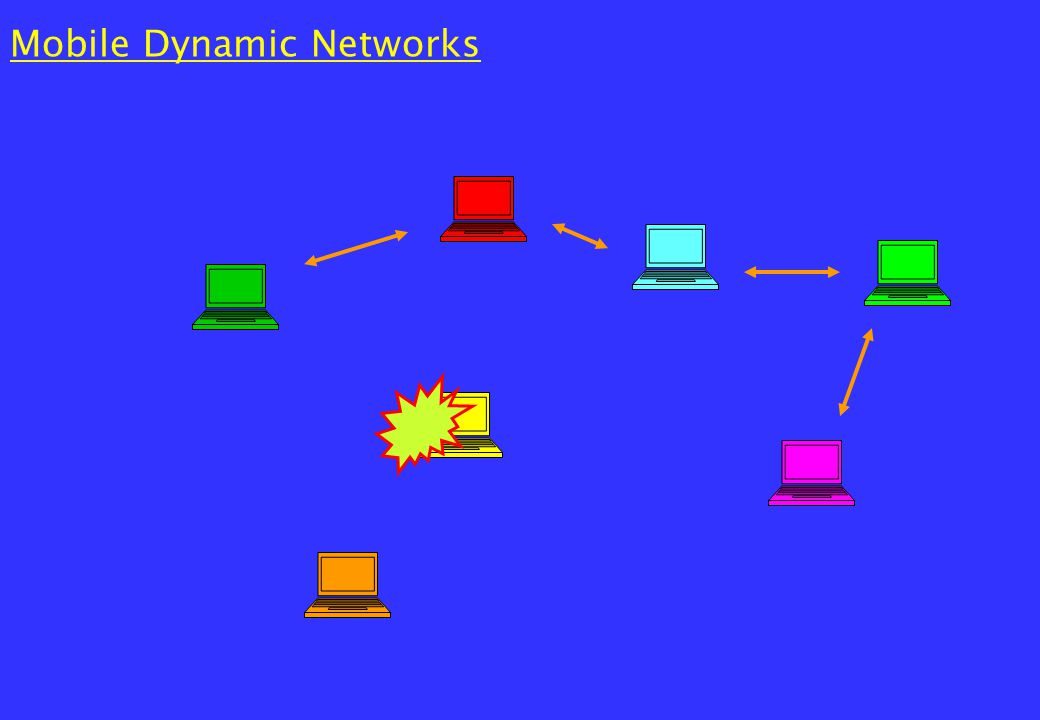 Fixed Dynamic Networks