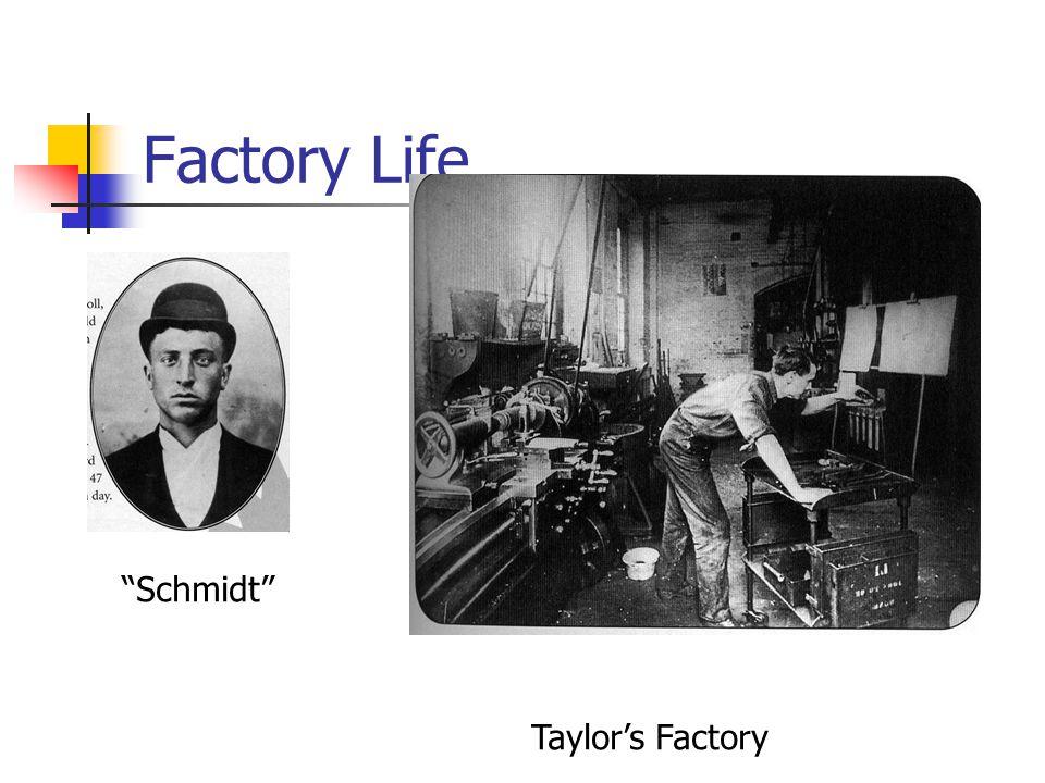 Factory Life Schmidt Taylor's Factory