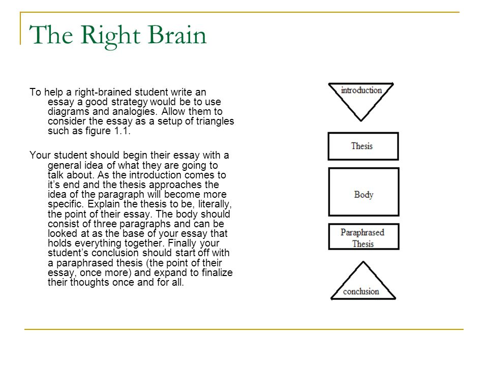 The Right Brain To help a right-brained student write an essay a good strategy would be to use diagrams and analogies.
