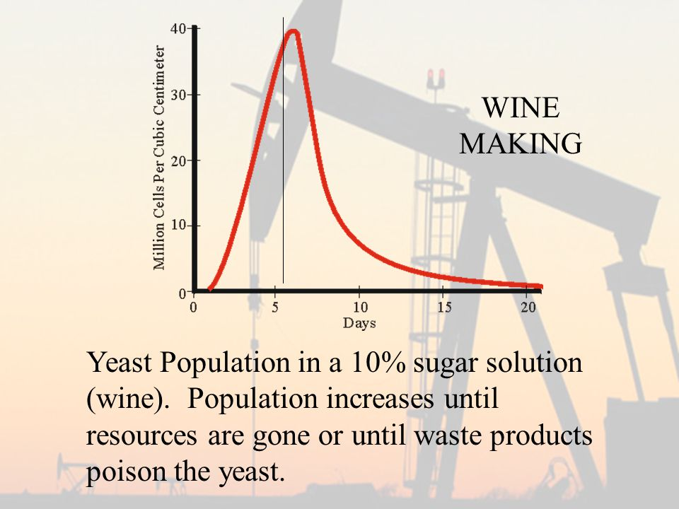 Yeast Population in a 10% sugar solution (wine).