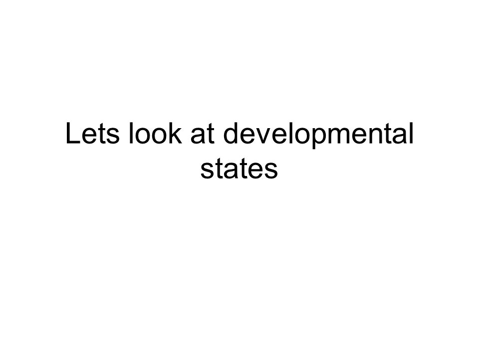 Some Definitions of the Developmental State Fritz and Menocal (2007: 533), for example, understand a developmental state to exist when the state possesses the vision, leadership and capacity to bring about a positive transformation of society within a condensed period of time .