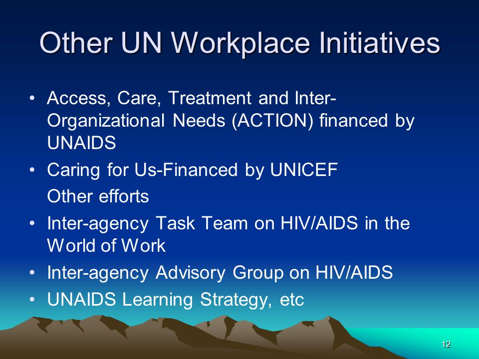 12 Other UN Workplace Initiatives Access, Care, Treatment and Inter- Organizational Needs (ACTION) financed by UNAIDS Caring for Us-Financed by UNICEF
