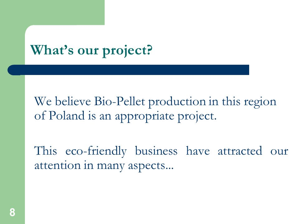 8 What's our project.